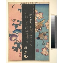 Katsushika Hokusai: Bird-and-Flower Paintings - Metropolitan Museum of Art