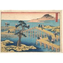 葛飾北斎: Ancient View of Yatsuhashi in Mikawa Province (Mikawa no Yatsuhashi no kozu), from the series Remarkable Views of Bridges in Various Provinces (Shokoku meikyô kiran) - メトロポリタン美術館