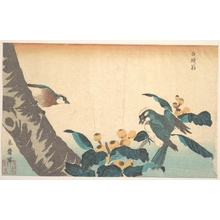 Keisai Eisen: Birds and Flowers - Metropolitan Museum of Art