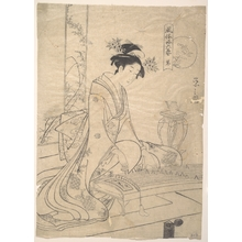 Hosoda Eishi: Young Lady Playing a Musical Instrument - Metropolitan Museum of Art
