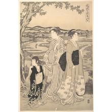 細田栄之: Parrot Komachi - メトロポリタン美術館