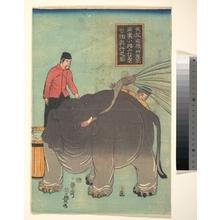 Utagawa Yoshitoyo: - Metropolitan Museum of Art