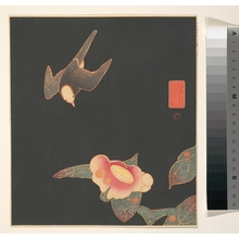 伊藤若冲: Swallow and Camellia - メトロポリタン美術館