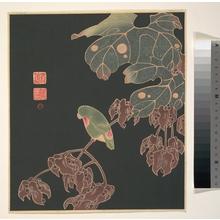 伊藤若冲: The Paroquet - メトロポリタン美術館