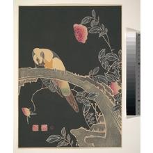 伊藤若冲: Parrot on the Branch of a Flowering Rose Bush - メトロポリタン美術館