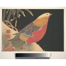 Jakuchu: Golden Pheasant in the Snow - Metropolitan Museum of Art