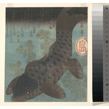 Yashima Gakutei: Carp and Pine - Metropolitan Museum of Art