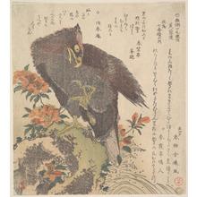 Kubo Shunman: Eagle on a Rock; Flowering Azaleas - Metropolitan Museum of Art