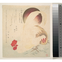 Totoya Hokkei: Rising Sun and a Cock and a Hen - Metropolitan Museum of Art