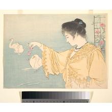 鏑木清方: Swans - メトロポリタン美術館