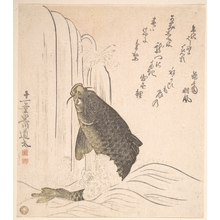 Kurokawa Michita: Carp Trying to Swim up a Waterfall - Metropolitan Museum of Art