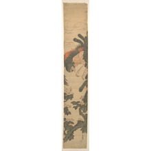 Isoda Koryusai: Phoenix Flying Over a Paulownia Tree - Metropolitan Museum of Art