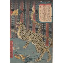 Utagawa Yoshitoyo: Tiger in a Cage - Metropolitan Museum of Art