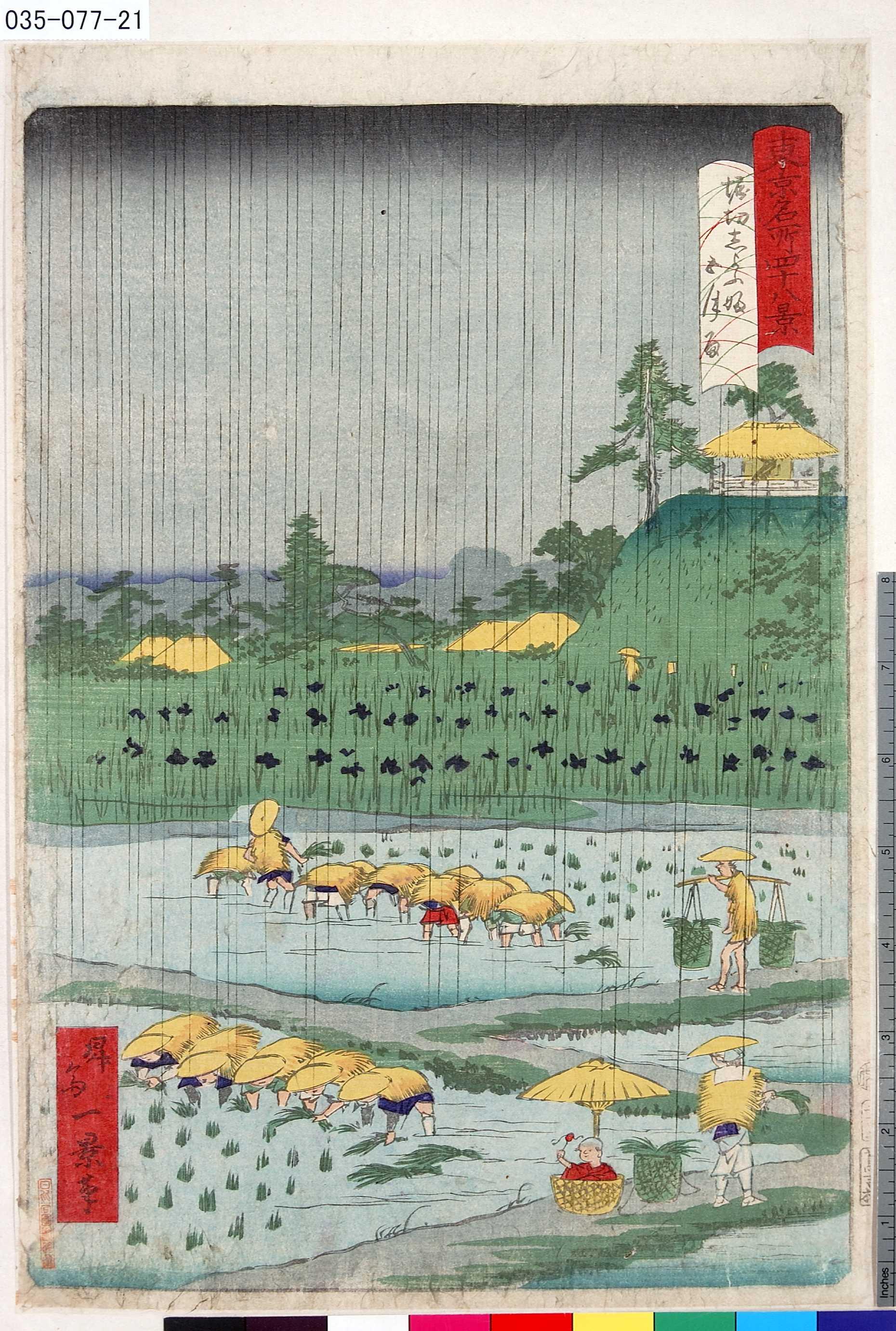 一景: 「東京名所四十八景」 「堀切しよふ婦五月雨」 - 東京都立図書館 - 浮世絵検索