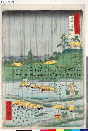 Ikkei: 「東京名所四十八景」 「堀切しよふ婦五月雨」 - Tokyo Metro Library