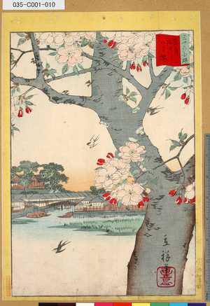 035-C001-010「三十六花撰」「東都隅田川八重桜」 「九」・・-『』