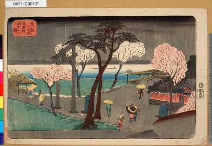 0471-C008a「東都名所」 「隅田堤雨中之桜」・・-『』