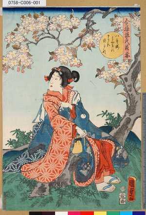 二代歌川国貞: 「今様源氏花揃」 「八重桜みやまにまさる姿かな」 - 東京都立図書館