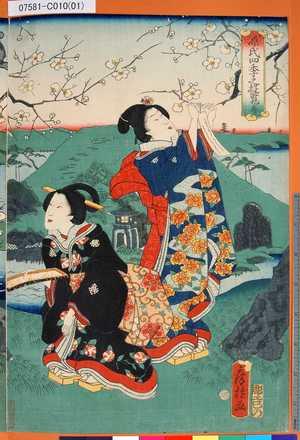 07581-C010(01)「源氏四季之遊覧」「春」 ・・-『』