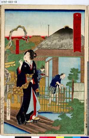豊原国周: 「開化三十六會席」 「向島」「平岩」 - 東京都立図書館