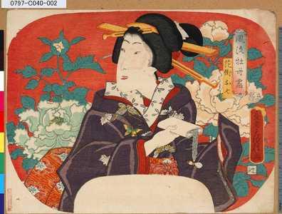 Utagawa Fusatane: 「風流牡丹尽」 「花街お七」 - Tokyo Metro Library