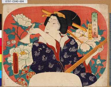 Utagawa Fusatane: 「風流牡丹尽」 「花街おふた」 - Tokyo Metro Library