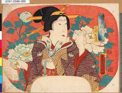 Utagawa Fusatane: 「風流牡丹尽」 「花街おます」 - Tokyo Metro Library