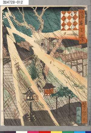 芳瀧: 「浪花百景」 「佐奈田山三光宮」 - 東京都立図書館