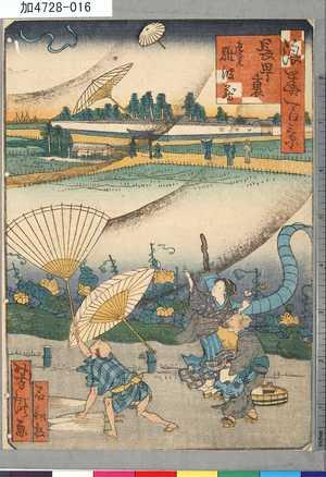 芳瀧: 「浪華百景」 「長町裏」「遠見難波蔵」 - 東京都立図書館