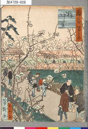 芳瀧: 「浪花百景」 「梅やしき」 - 東京都立図書館