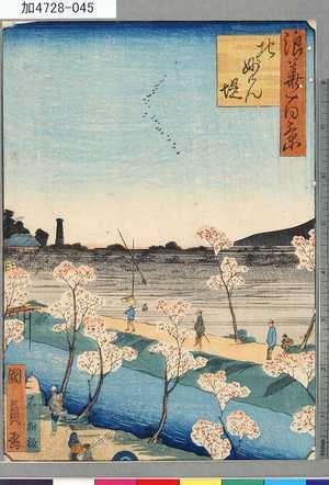 Utagawa Kunikazu: 「浪華百景」 「北妙けん堤」 - Tokyo Metro Library