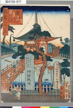 芳瀧: 「浪華百景」 「あみだ池」 - 東京都立図書館