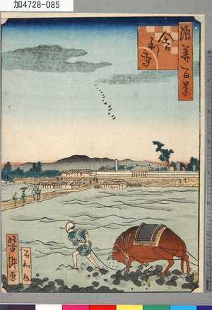 芳瀧: 「浪華百景」 「舎利寺」 - 東京都立図書館