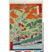 Ikkei: 「東京名所四十八景」 「海案寺乃紅葉」 - Tokyo Metro Library