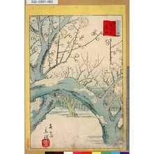 Utagawa Hiroshige II: 「三十六花撰」 「東京梅屋敷臥龍梅」 - Tokyo Metro Library