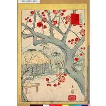 Utagawa Hiroshige II: 「三十六花撰」 「東京大森山本紅梅」「二」 - Tokyo Metro Library