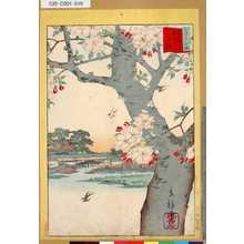 Utagawa Hiroshige II: 「三十六花撰」「東都隅田川八重桜」 「九」 - Tokyo Metro Library