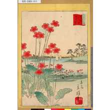 Utagawa Hiroshige II: 「三十六花撰」「東京戸田原さくら草」 「十」 - Tokyo Metro Library