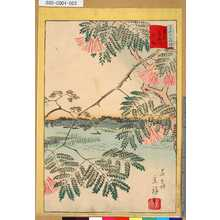 Utagawa Hiroshige II: 「三十六花撰」「東京綾瀬川合歓」 「廿二」 - Tokyo Metro Library
