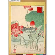 Utagawa Hiroshige II: 「三十六花撰」「東京不忍池蓮花」 「廿五」 - Tokyo Metro Library