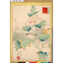 Utagawa Hiroshige II: 「三十六花撰」「東都隅田川花屋敷芙蓉花」 「廿七」 - Tokyo Metro Library