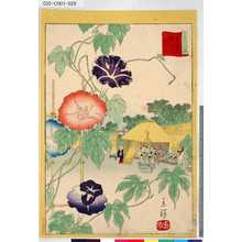 Utagawa Hiroshige II: 「三十六花撰」「東都入谷朝顔」 「廿八」 - Tokyo Metro Library
