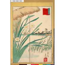 Utagawa Hiroshige II: 「三十六花撰」 「東都押上水仙花」「卅五」 - Tokyo Metro Library