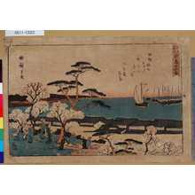 Utagawa Hiroshige: 「江戸名所」 「御殿山花盛」 - Tokyo Metro Library