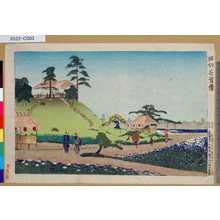 小林清親: 「堀切花菖蒲」 - 東京都立図書館