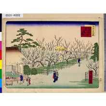 一景: 「東京三十六景」 「十三」「亀井戸臥竜梅」 - 東京都立図書館