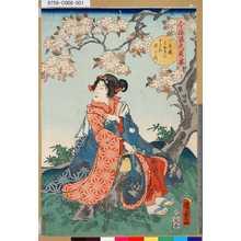 Utagawa Kunisada II: 「今様源氏花揃」 「八重桜みやまにまさる姿かな」 - Tokyo Metro Library