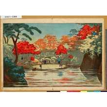 Kobayashi Kiyochika: 「[滝の川池の橋]」 - Tokyo Metro Library