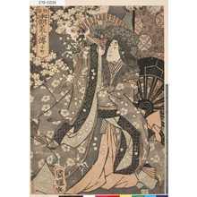 Utagawa Kuniteru: 「本朝美人伝」 「小町」 - Tokyo Metro Library