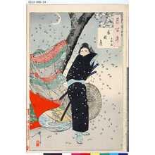 月岡芳年: 「月百姿」 「忍岡月 玉淵斎」 - 東京都立図書館